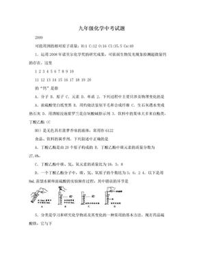 九年级化学中考试题.doc