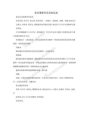 党支部委员会会议记录.doc