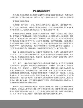 护士岗前培训总结范文.docx