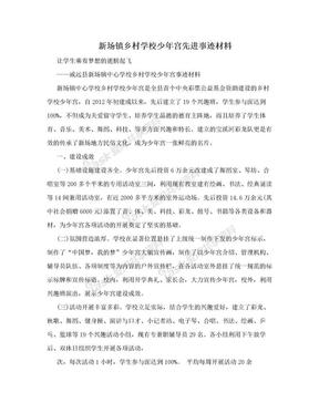 新场镇乡村学校少年宫先进事迹材料.doc