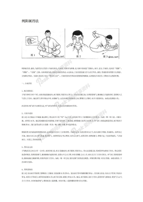 纯阳派丹法--李国兴.doc