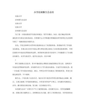 小学法制报告会总结.doc