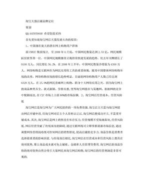 淘宝天猫店铺品牌定位策划.doc