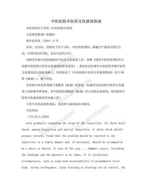 中医医院中医药文化建设指南.doc