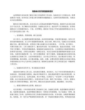 财务会计实习实践报告范文.docx