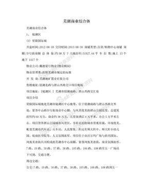 芜湖商业综合体.doc