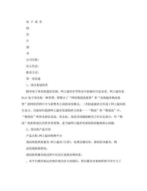 大学生电子商务创业计划书.doc