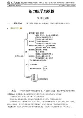 酸碱盐复习能力组学案.doc
