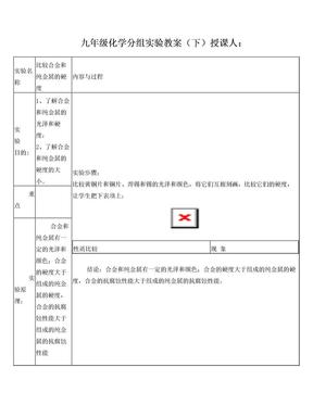 九年级化学分组实验教案      (下)                               授课人.doc
