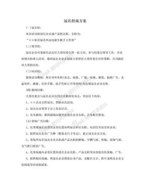 冠名招商方案.doc