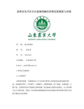昆明市东川区小江流域剑麻经济林发展现状与对策.doc