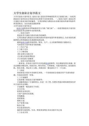 大学生创业计划书范文.doc
