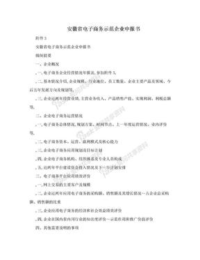 安徽省电子商务示范企业申报书.doc