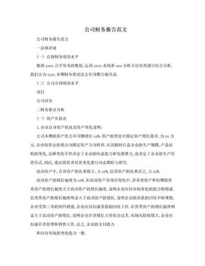 公司财务报告范文.doc
