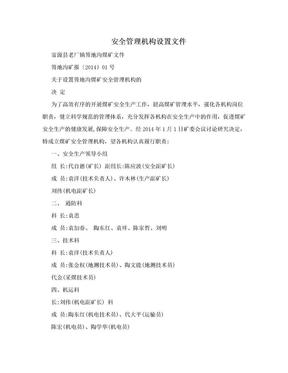 安全管理机构设置文件.doc