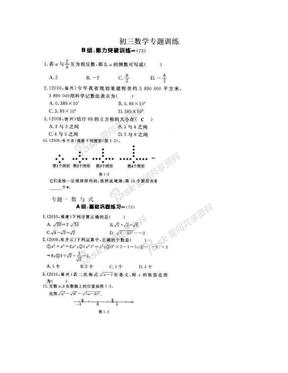 初三数学专题训练.doc