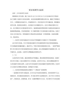 审计培训学习总结.doc