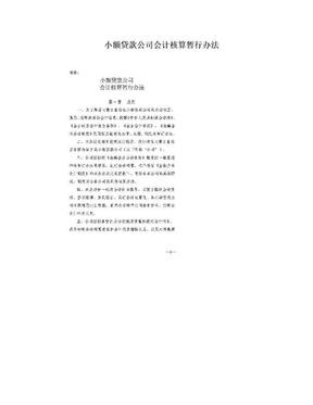 小額貸款公司會計核算暫行辦法.doc