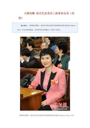 大牌闪耀 两会代表委员上演奢侈品秀.doc