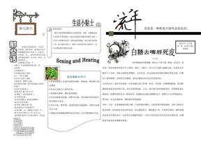Word电子报模板-1.doc