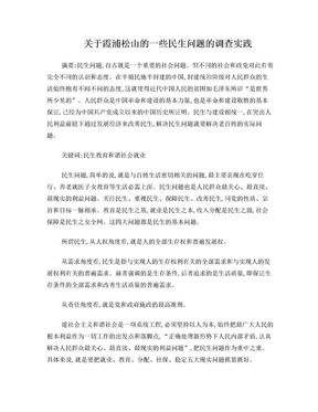民生问题的调研报告实践论文.doc