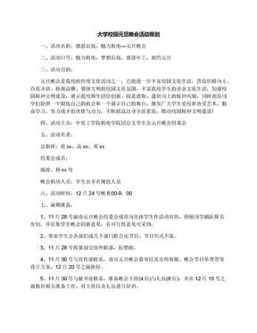 大学校园元旦晚会活动策划.docx