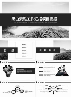 黑白素雅项目融资计划提报PPT 1176.pptx