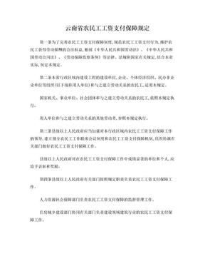 云南省农民工工资支付保障规定.doc