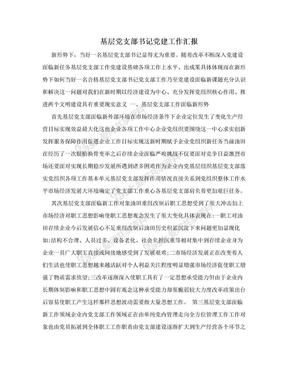 基层党支部书记党建工作汇报.doc