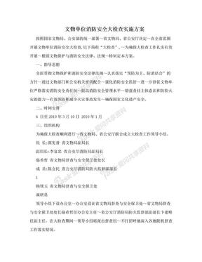 文物单位消防安全大检查实施方案.doc