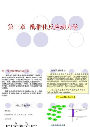 3第三章 酶催化反应动力学.ppt