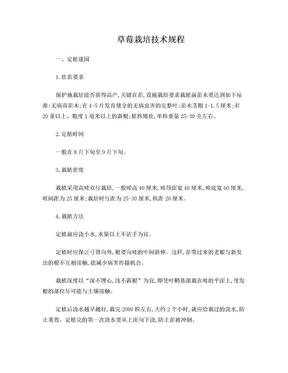 草莓栽培技术规程.doc