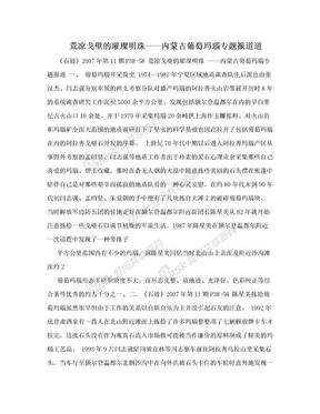 荒凉戈壁的璀璨明珠——内蒙古葡萄玛瑙专题报道道.doc