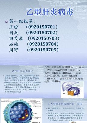 乙型肝炎病毒.ppt