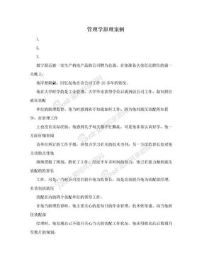 管理学原理案例.doc
