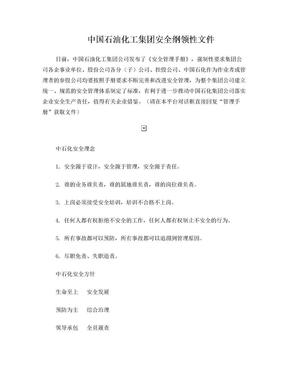 中石化安全管理手册.doc