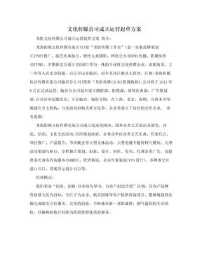 文化传媒公司成立运营起草方案.doc