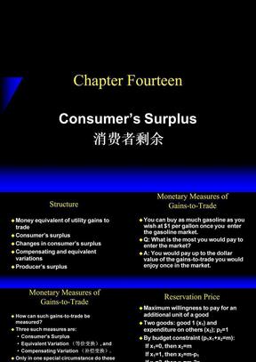ch14 Consumer's Surplus.ppt