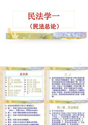 王利明—民法学总论课件.ppt