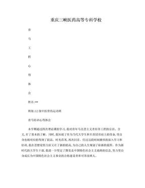 青马培训心得体会2(上交版) 3.doc