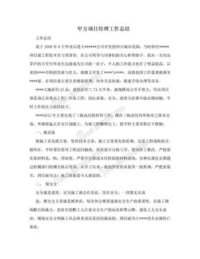 甲方项目经理工作总结.doc