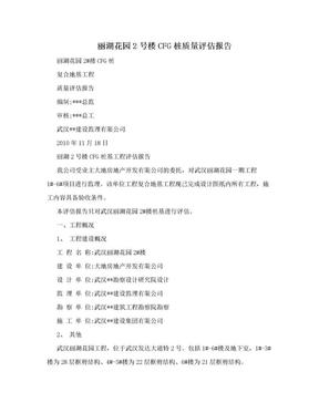 丽湖花园2号楼CFG桩质量评估报告.doc