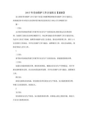 2017年劳动保护工作计划范文【最新】.doc