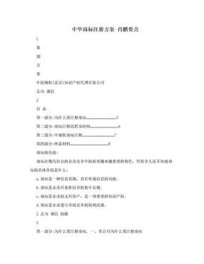 中华商标注册方案-肖鹏要点.doc