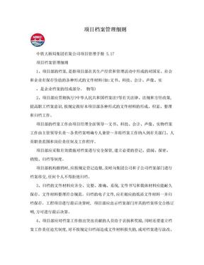 项目档案管理细则.doc