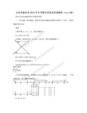 山东省临沂市2016年中考数学试卷及答案解析(word版).doc
