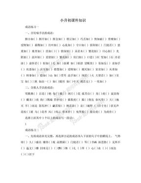 小升初课外知识.doc