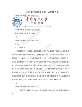 云峰翡翠品牌建设及广告运作方案.doc