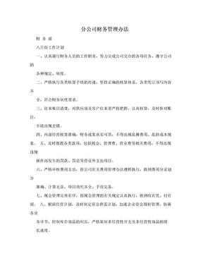 分公司财务管理办法.doc