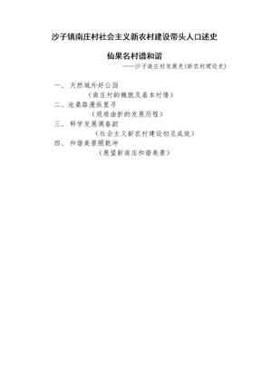 沙子镇南庄村社会主义新农村建设带头人口述史.doc